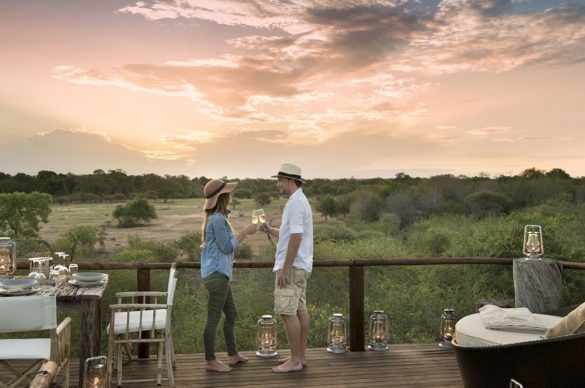 What to expect on a South African Safari
